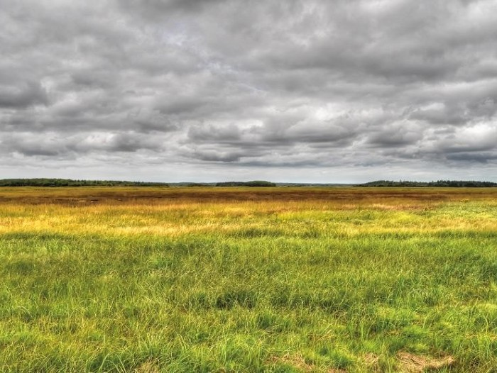 Tantramar Marshes