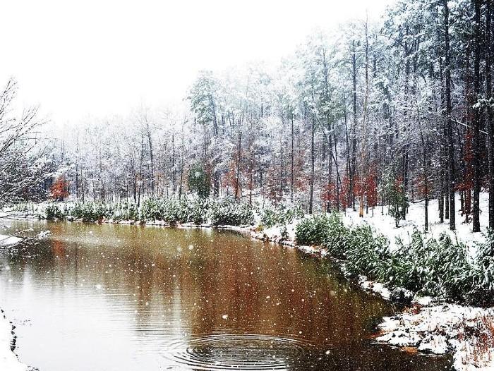 Scène d'un gel hivernal