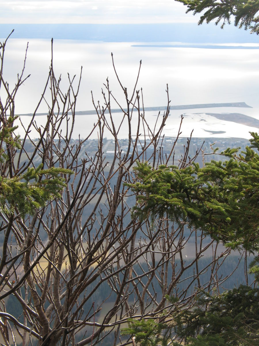 Barachois de Carleton-sur-mer vu du mont Saint-Joseph