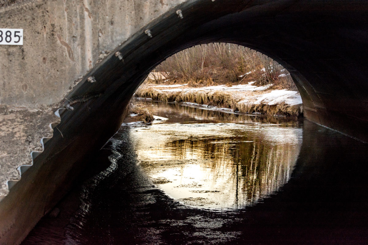 Le ruisseau Hall à Moncton
